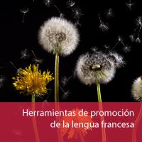 herramientas-de-promocion-lebgua-francesa